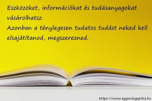 A tudás elsajátítása pénzért nem megvásárolható