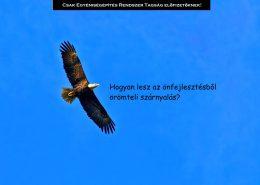 Hogyan lesz az önfejlesztésből örömteli szárnyalás?